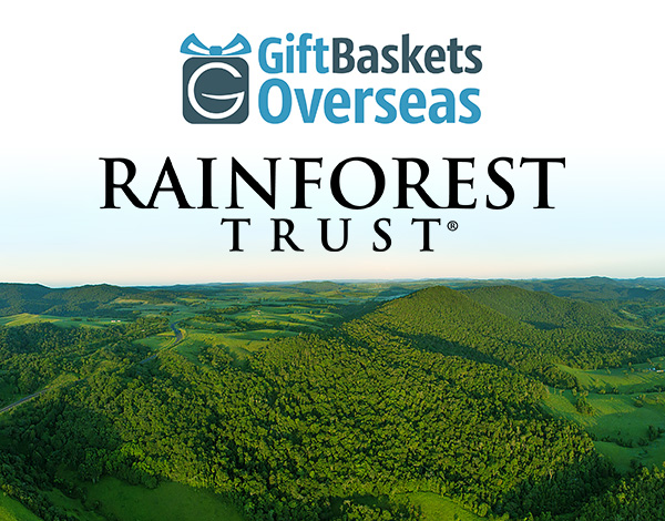 Rainforest-Trust-and-GBO-partnership-article